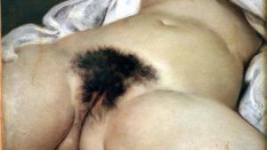 La chirurgie de l'intime, la chirurgie du sexe féminin